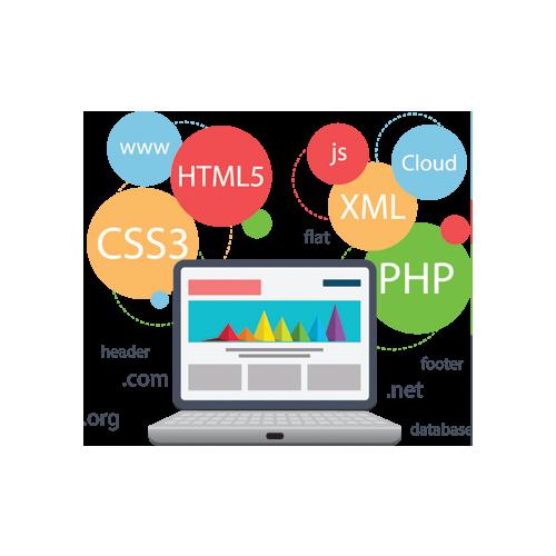 custom web development in Houston Texas